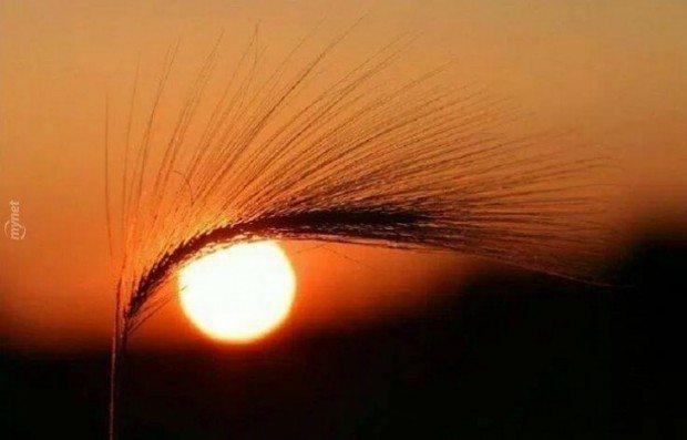 güneş etkileşimi dünya yaratıcılık insan yaşam