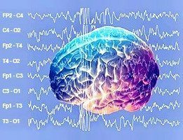 schuman rezonansları brain schuman resonance