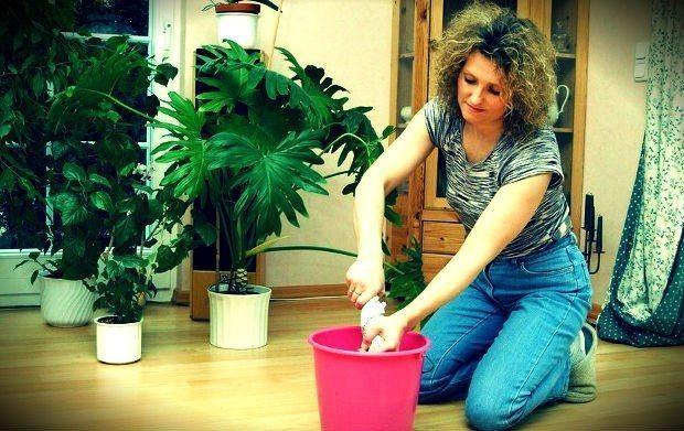 ev hanımı ilanı ev hanımı aranıyor iş ilanı