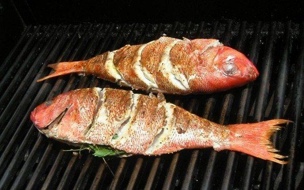 kilo vermek için balık yemek neden gerekli