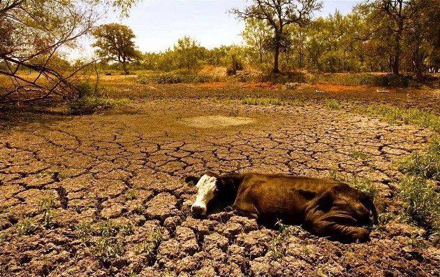 NASA'nın raporuna göre Türkiye'nin de içinde bulunduğu Doğu Akdeniz bölgesinde son 9 asrın en kötü kuraklık dönemi yaşanıyor.