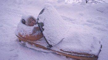 norveç norveçli bebek arabası kar altında