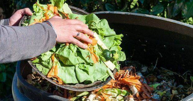 Toplam yiyecek üretiminin üçte biri, yani dünya üzerindeki 795 milyon yetersiz beslenen insanı beslemek için gerekli miktarın 4 katı, israf ediliyor.