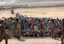 """KHAS, """"Suriyeli sığınmacılar"""" konusunda çalıştay düzenledi"""