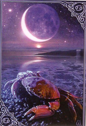 yeni ay yengeç burcu astroloji 4 temmuz