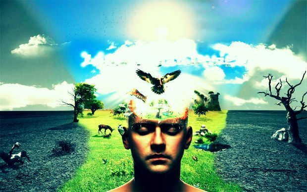 Kaldırın başınızı güne güneşe bir anda