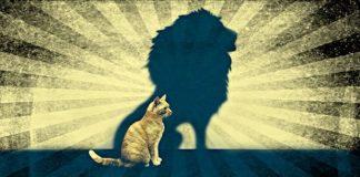 Astroloji: 2 Ağustos Aslan burcunda Yeni Ay