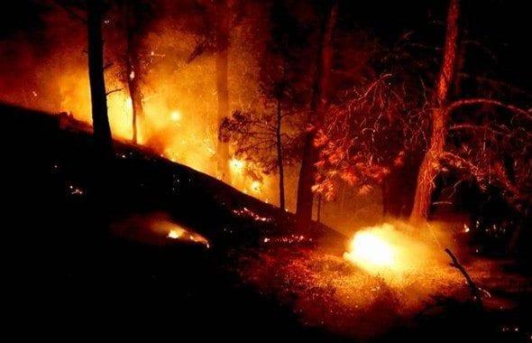 Kazdağları yanıyor: 20 hektar alan zarar gördü