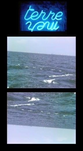 nil-yalter-deniz-meslekleri