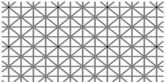 Bilim insanı Jacques Ninio'nun yarattığı optik illüzyon sosyal medyada 'Resimde kaç nokta var?' sorusuna çokça farklı yanıt verilmesine neden oluyor.