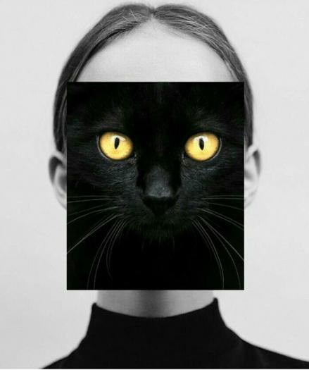 akrep kedi kadın