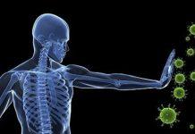Bağışıklık sistemini güçlendirecek beslenme önerileri