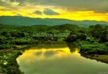 TEMA Vakfı: Filyos Vadisi'nde doğal hayat tehdit altında!