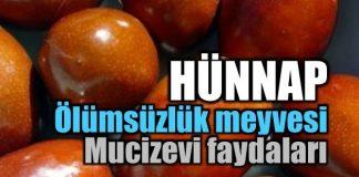ölümsüzlük meyvesi Hünnap meyvesinin faydaları nelerdir?