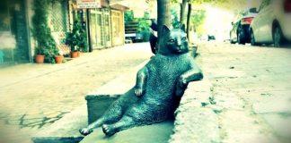 Oturuşu dünyaca meşhur olan Kadıköy'ün bıçkın kedisi Tombili'nin heykeli İstanbul'un Kadıköy ilçesinde açıldı.