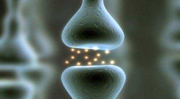 Kemik erimesi Osteoporoz belirtileri ve tedavisi nedir?