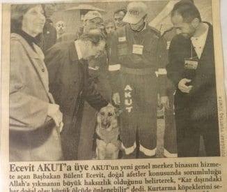Radikal 2002