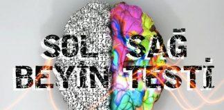 Sağ ve Sol Beyin Testi: Beyninizde hangi lobu daha iyi kullanıyorsunuz?