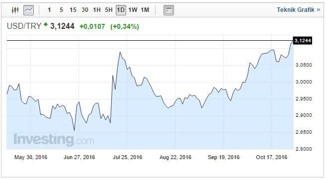 Dolar/TL, resmi tatil nedeniyle yarım gün açık olan piyasalarda bu sabah 3.1265'e kadar yükselerek yeni tarihi zirveyi gördü.