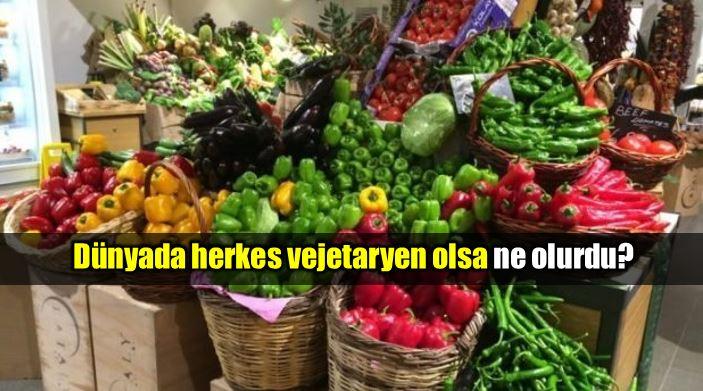 Dünyada herkes vejetaryen olsa ne olurdu?