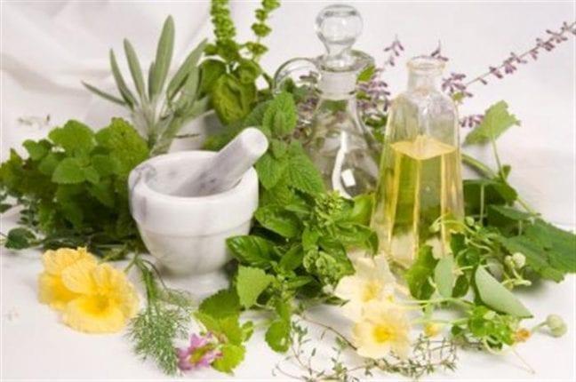 Bitkilerin gücü ile bağışıklık sisteminizi güçlendirin!