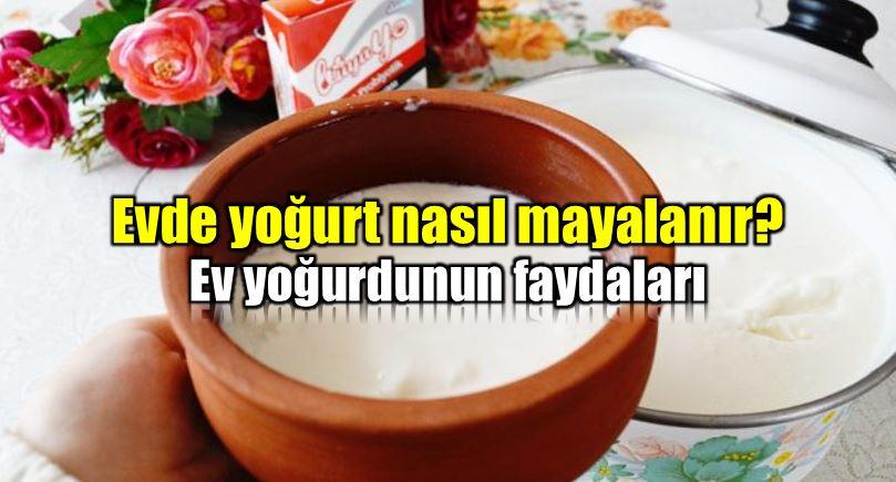 ev yoğurdu faydaları evde yoğurt nasıl mayalanır tarifi malzemeler hazırlanışı