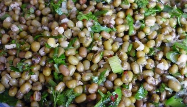 Vejetaryen beslenme protein maş fasulyesi faydaları salatası tarifi