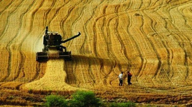 Tarımın geleceği için eğitime destek!