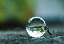 Hayat başlar ve biter; 2017 değişim ve sorumluluk yılı