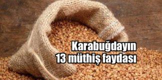 Karabuğday nedir? Tüketmeniz için 13 sağlıklı neden