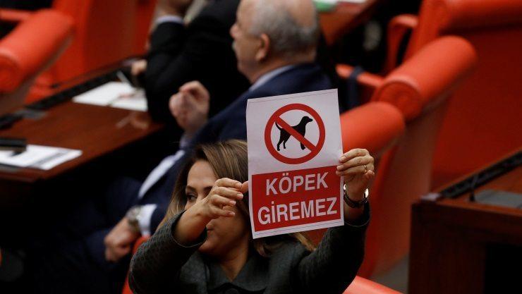 Mecliste'Dikkat köpek giremez' afişi tutanlar'köpek' kelimesini hakaret olarak kullanırsa hayvanlara yönelik şiddetin sonu gelir mi?