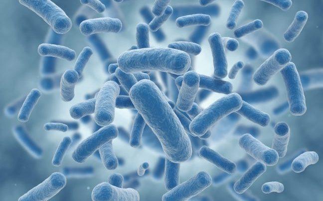 Probiyotik tüketimi psikolojiyi nasıl etkiliyor?