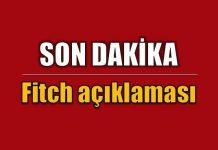 Fitch Türkiye'nin kredi notunu
