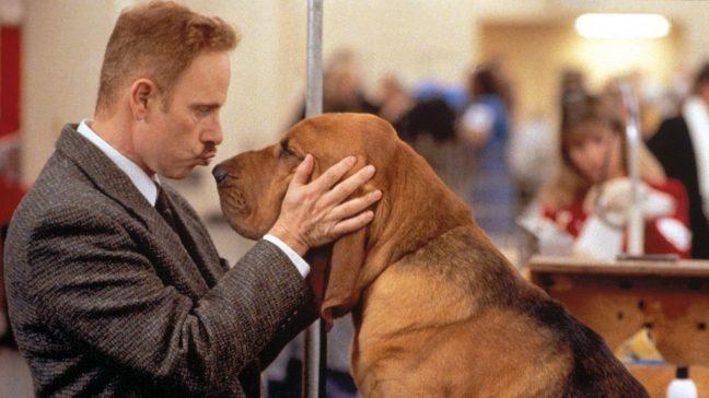 En güzel köpek