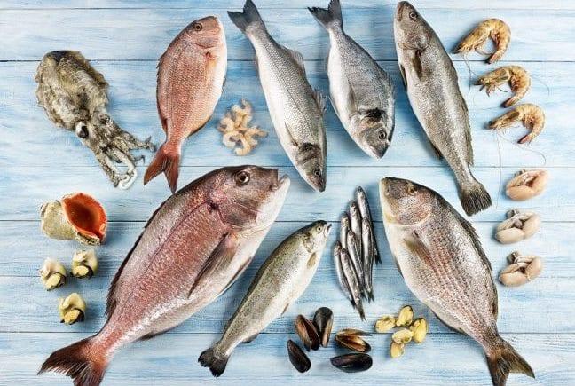 balık tüketimi