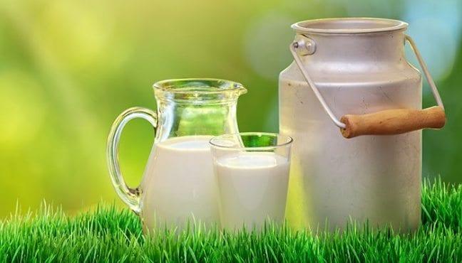 açık süt