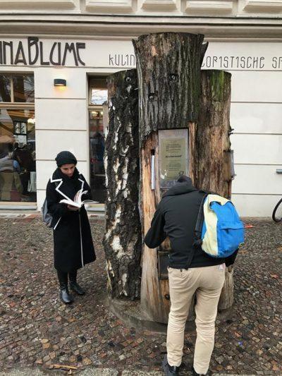 Ağaç kütüphane: Berlin'de bir kitap okuma hareketi