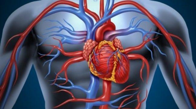 DAS ile damar tıkanıklığı tedavisine yeni bir yaklaşım