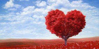 Kalbinizi korumak için 8 altın öneri!