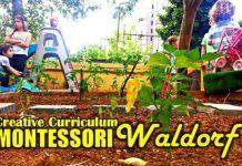 Okul öncesi: Creative Curriculum, Montessori ve Waldorf cansın selçuk