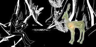 Dünya Kadınlar Günü'ne özel bir seçki: Kısa Animasyon programı!