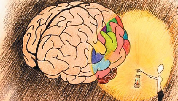 beyin gelişimi için öneriler