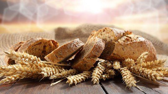 Buğday ekmeği şekerden daha tehlikeli!