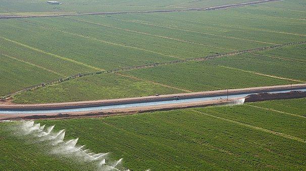 Harran Ovası'nın tamamı suya kavuşacak