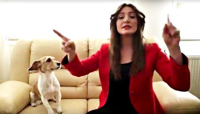 İşaret diliyle 'Hayır' dedi: En farklı 'Hayır' videosu