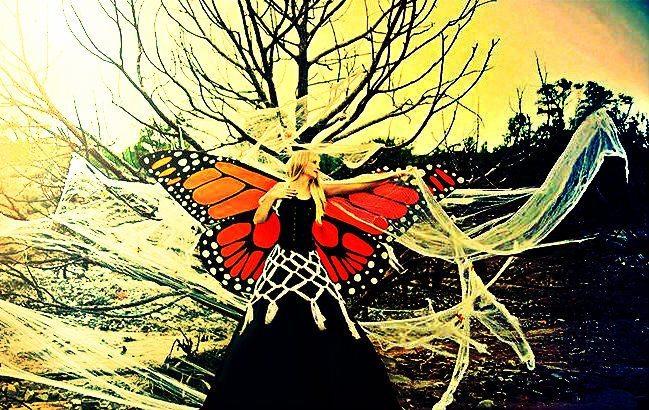 Örümcek ağında bir kelebek: Kadın