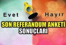 Son referandum anketi ve kamuoyu araştırması sonuçları