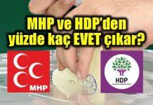 Referandumda MHP ve HDP'nin yüzde kaçı evet diyecek?