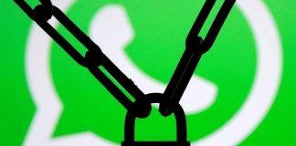 WhatsApp Durum değişmişti, şimdi WhatsApp Info geliyor