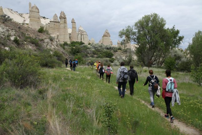 Cappadox